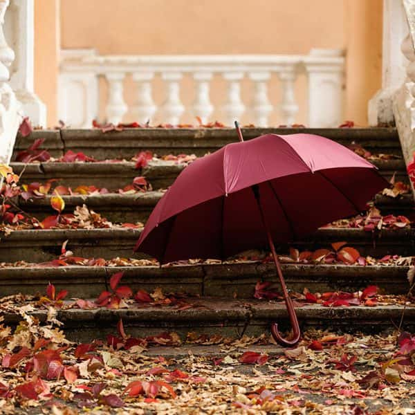Pantone has named the color of the year for 2015, Marsala